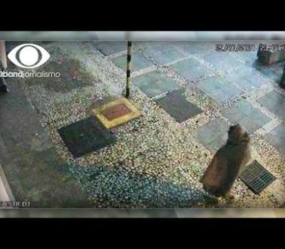 [CENA FORTE] - Vídeo mostra momento em que homem ateia fogo em morador de rua